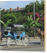 Carriage Tours New Orleans Wood Print