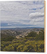 Carrizo Canyon Wood Print