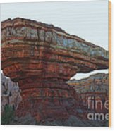 Cars Land Canyon Wood Print