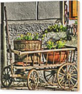 Cart And Flowers In Slovenia Wood Print