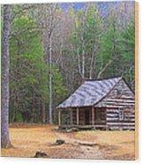 Carter Shield's Cabin II Wood Print by Jim Finch