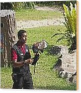 Cartoon - A Trainer And A Large Bird Of Prey At A Show Inside The Jurong Bird Park Wood Print