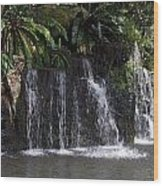 Cartoon - A Waterfall As Part Of An Exhibit Inside The Jurong Bird Park Wood Print