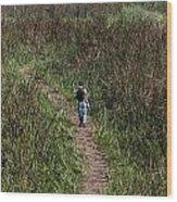 Cartoon - Man Walking Through Tall Grass In The Okhla Bird Sanctuary Wood Print