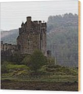 Cartoon - Structure Of The Eilean Donan Castle In Front With Dry Part Of Lake Wood Print