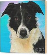 Cartoon Collection No 3 Life With A Border Collie In Usa Wood Print