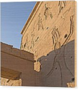 Carved Wall Of The Temple  Philae  Wood Print