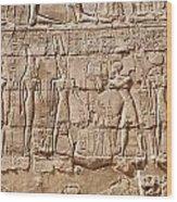 Carvings At The Temple Of Karnak Wood Print