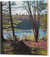 Cary Lake In The Fall Wood Print