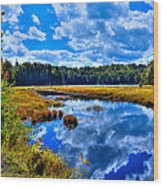 Cary Lake Near Old Forge New York Wood Print by David Patterson