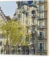 Casa Batllo - Barcelona Spain Wood Print