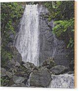 Cascada Blanco Wood Print