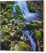 Cascade Creek Wood Print
