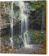 Cascade Falls In The Fall Wood Print
