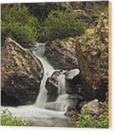 Cascade In Lower Ice Lake Basin Wood Print