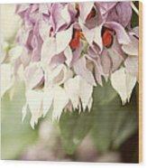 Cascade Of Flower Wood Print