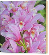 Cascade Of Pink Orchids Wood Print