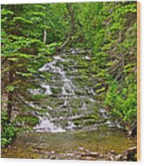 Cascade Over Mossy Rocks Along La Chute Trail In Forillon Np-qc Wood Print