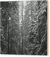 Cascade Snow Wood Print