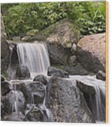 Cascade Waterfall Wood Print