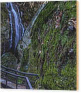Cascade Waterfall Wood Print