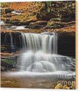 Cascades At Ricketts Glen Wood Print