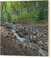 Cascades Of The Forest Wood Print