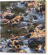 Cascading Autumn Leaves On The Miners River Wood Print