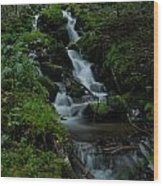 Cascading Brook In Mount Rainier National Park Wood Print
