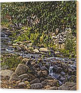 Cascading Creek Wood Print