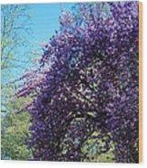 Cascading Flowers Wood Print