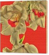 Cascading Gladiolas Wood Print