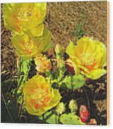 Cascading Prickly Pear Blossoms Wood Print