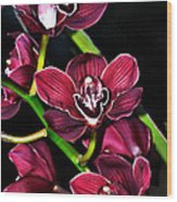 Cascading Red Orchids Wood Print