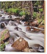 Cascading Rocky Mountain Forest Creek Wood Print