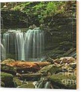 Cascading Through Glen Leigh Wood Print