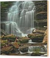 Cascading Through Ricketts Glen Wood Print