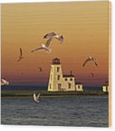 Cascumpec Lighthouse On Prince Edward Island Wood Print
