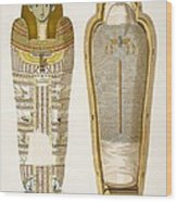 Case And Mummy In Its Cerements Wood Print