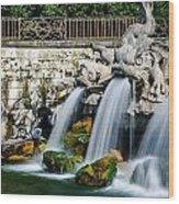 Caserta Palace Fountain 1 Wood Print