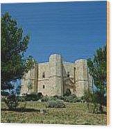 Castel Del Monte Wood Print
