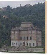 Castello Di Pamparato Wood Print