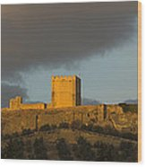 Castillo De La Mota Wood Print