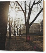 Casting A Shadow Wood Print by Eugene Bergeron