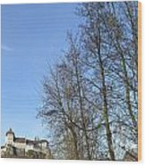 Castle And Trees Wood Print