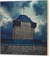 Castle Burg Wood Print