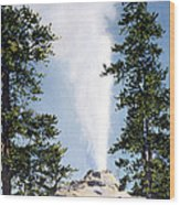 Castle Geyser Yellowstone Np Wood Print