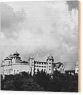Castle Harburg 2 Wood Print
