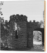 Castle II Wood Print