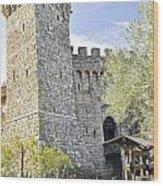 Castle In Spring Wood Print